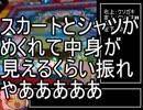 メダゲー紹介26『金魚すくい』