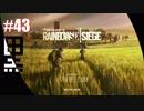 #43【 RAINBOWSIX SIEGE 】- こくとのFPS実況