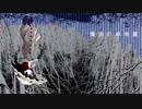 【東方自作アレンジ】魔法の笠地蔵【BPM130】