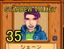 頑張る社会人のための【STARDEW VALLEY】プレイ動画35回