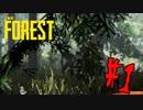 #1 【The Forest】ぼっちサバイバルホラー【すっすー】