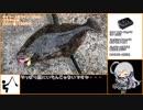 第40位:ジルと俺の釣り物語 part.29#ヒラメシーズンIN【ゆっくり実況】 thumbnail