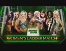 第23位:【WWE】女子MITB戦【MITB18】