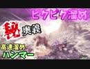 【MHW】ピクピク溜めとかいうハンマーの秘奥義