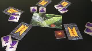 フクハナのボードゲーム紹介 No.266『レジスタンス:アヴァロン』