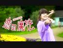 第38位:【ださめがね】 恋の魔法 【踊ってみた】 thumbnail