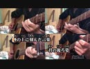 【ニコカラ】 打上花火 Acoustic Arrange.Ver (メロver.) 【ビッ栗】