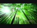 第13位:Chikkutune 竹製楽器×チップチューン XFD thumbnail
