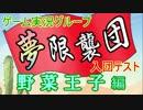 【実況】ψ夢限襲団ψ入団テスト ~ボンバーマン&動物タワー~