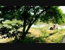 里山の風景 その2