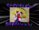 【動画制作30日一本勝負】アリスの好きなシチュ【第10回東方ニコ童祭】