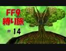 #14 薬をぶっかける 低レベル&ボス1人討伐+αの縛りFF9【FINAL FANTASY IX】