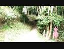 【第10回東方ニコ童祭】まっしろなしあわせ【東方自作ボーカルアレンジ】