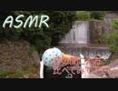 【ASMR】小さなダムで音の聞き比べ【立体音響】
