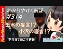 【FNW】玉木雄一郎の妄言!小沢一郎の寝言!?