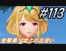 #113 嫁が実況(ゲスト夫)『ゼノブレイド2』~小指をぶつけてニューゲーム編~