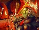 仮面ライダーストロンガー 第23話「地底王国の魔王!!」
