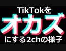 TikTokをオカズにする2ちゃんねらー達の様子は壮絶でした