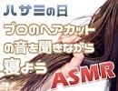 【ハサミの日】プロのヘアカットの音を聞きながら寝よう - イヤホン推奨【ASMR】