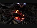 【ホモと学ぶ】山で遭難するYouTuber Survival in japan