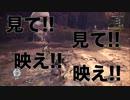 【MHW】ぐだぐだモンハンワールド!!食という欲の扉を開け編【実況】