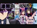 【マリオカート8DX】目指すは優勝…!キズナアイ杯 道明寺晴翔視点 Part1