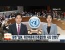 国連「日本は慰安婦問題に満足すべき謝罪及び補償はなかった」韓国の報道