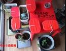 タカハシのガーデニングその5「ヤハズエンドウとイチゴとチアと稲」赤星編