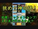 【ファンタジーライフオンライン】挑め!神の塔!初見でどこまで行けるかな?【FLO】#11