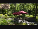 ポール・リード作曲【ヴィクトリアン・キッチン・ガーデン組曲】より【プレリュード】をマンドリンで。