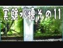 第63位:実験水槽その11 沈殿層のデトリタスを吸い出せる水槽を立ち上げてみた【解説付き】 thumbnail