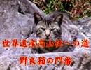 野良猫シリーズ 世界遺産高山社への道 野良猫の門番