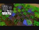 【ゆっくり実況】浮遊島で黒魔術入門Minecraft Part10【Botania/BloodMagic】