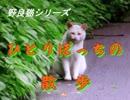 野良猫シリーズ ひとりぽっちの散歩