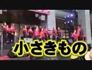 ポケモンの名曲!!林明日香「小さきもの」!!九州ゴスペルフェスティバル!!博多駅!!