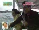 ひこにゃん:晴れドキ調査隊 彦根編2/2