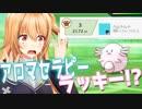 【ポケモン実況】最終3位の新戦術受けループマッチング!!まさかの型に驚愕!?