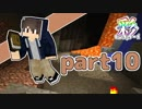 【Minecraft】いろどりクラフト【チーム実況】Part10