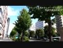 いちょう並木のセレナーデ/小沢健二【Cover】
