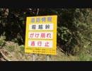 【バイク車載】国道162号線 その2.5(南丹)