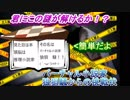 第86位:【初級編】(Vtuber)バーチャル小説家 狼狽騒からの挑戦状(問題編) thumbnail