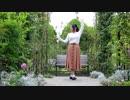 第95位:【莉依紗】うそつき 踊ってみた thumbnail