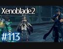 #113【ゼノブレイド2】ちょっと君と世界救ってくる【実況プレイ】