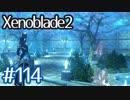 #114【ゼノブレイド2】ちょっと君と世界救ってくる【実況プレイ】