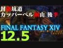 【FF14実況】新生!果てまで遊ぶぜ エオルゼア!Part12.5