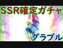 【グラブル】SSR確定ガチャを2回引く!誰が出る??【ガチャ205】