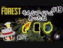 思い出したかのように重要アイテムをとりに行く #19 [ホラー]The Forest(ザ フォレスト) ~島から脱出出来るのか~