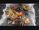 第11位:野宿の勧め(その11) thumbnail