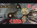 【バックブリーカーッ!】噓つき姫と盲目王子実況#9