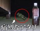 関東おかっぱり釣行① ペットボトルでうなぎ狙ってみた!